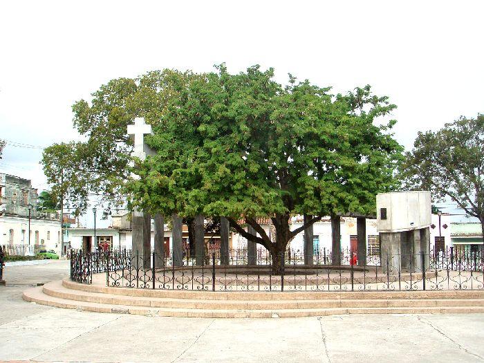 тамаринд - символ г. Санта-Клара, Куба